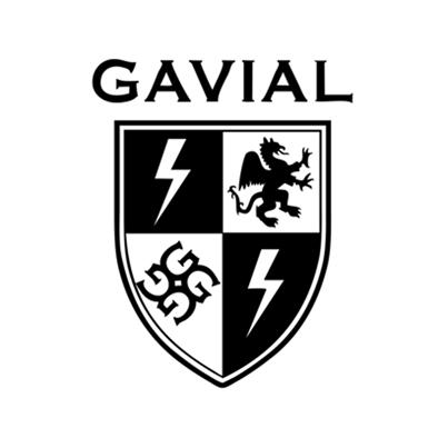 s_130123_gavialS